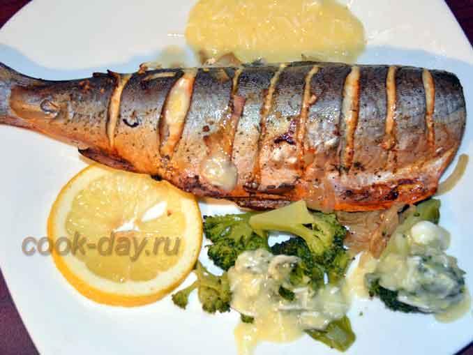 Голец с белым соусом - рыбное блюдо для обеда или ужина с горниром из броколи